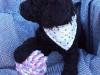litter04092011_daisy_05